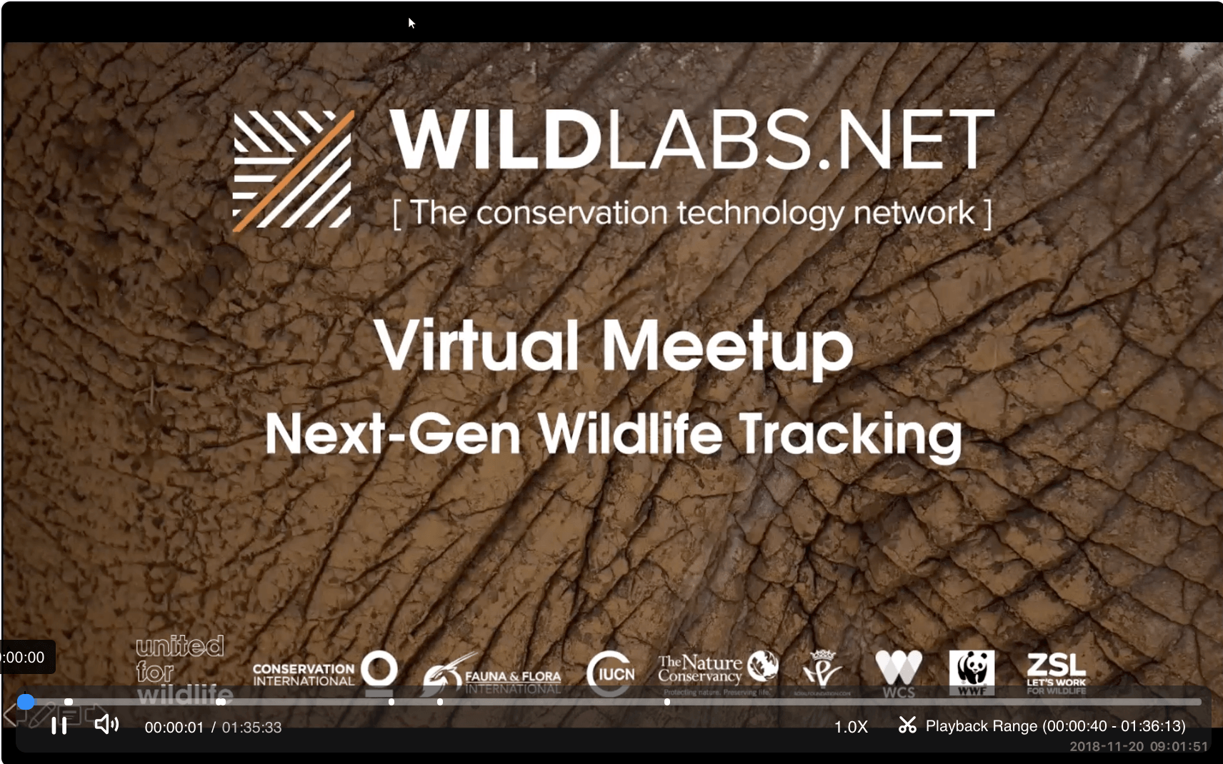 WILDLABS Virtual Meetup Link to Tracking Video Recording