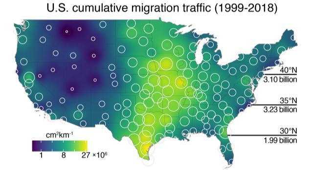 Average migration across the U.S., 1999-2018.