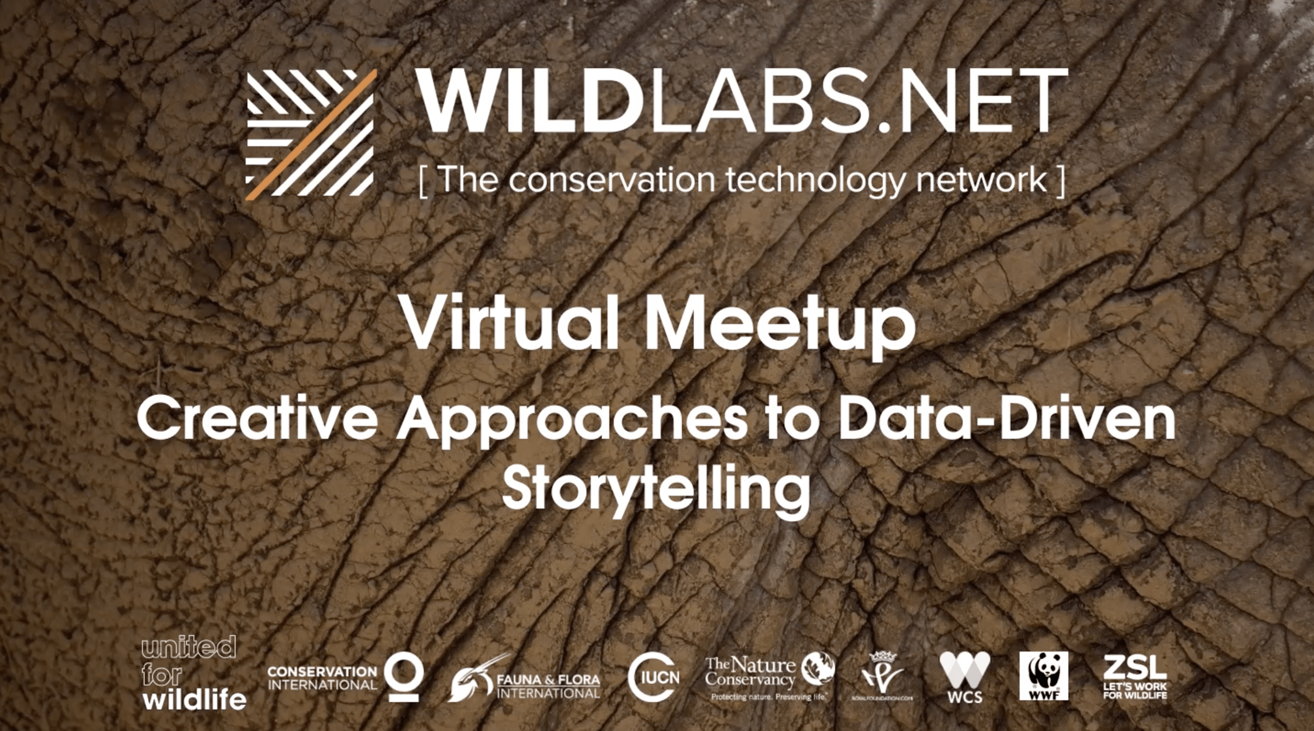 WILDLABS Virtual Meetup Link to Storytelling Video Recording