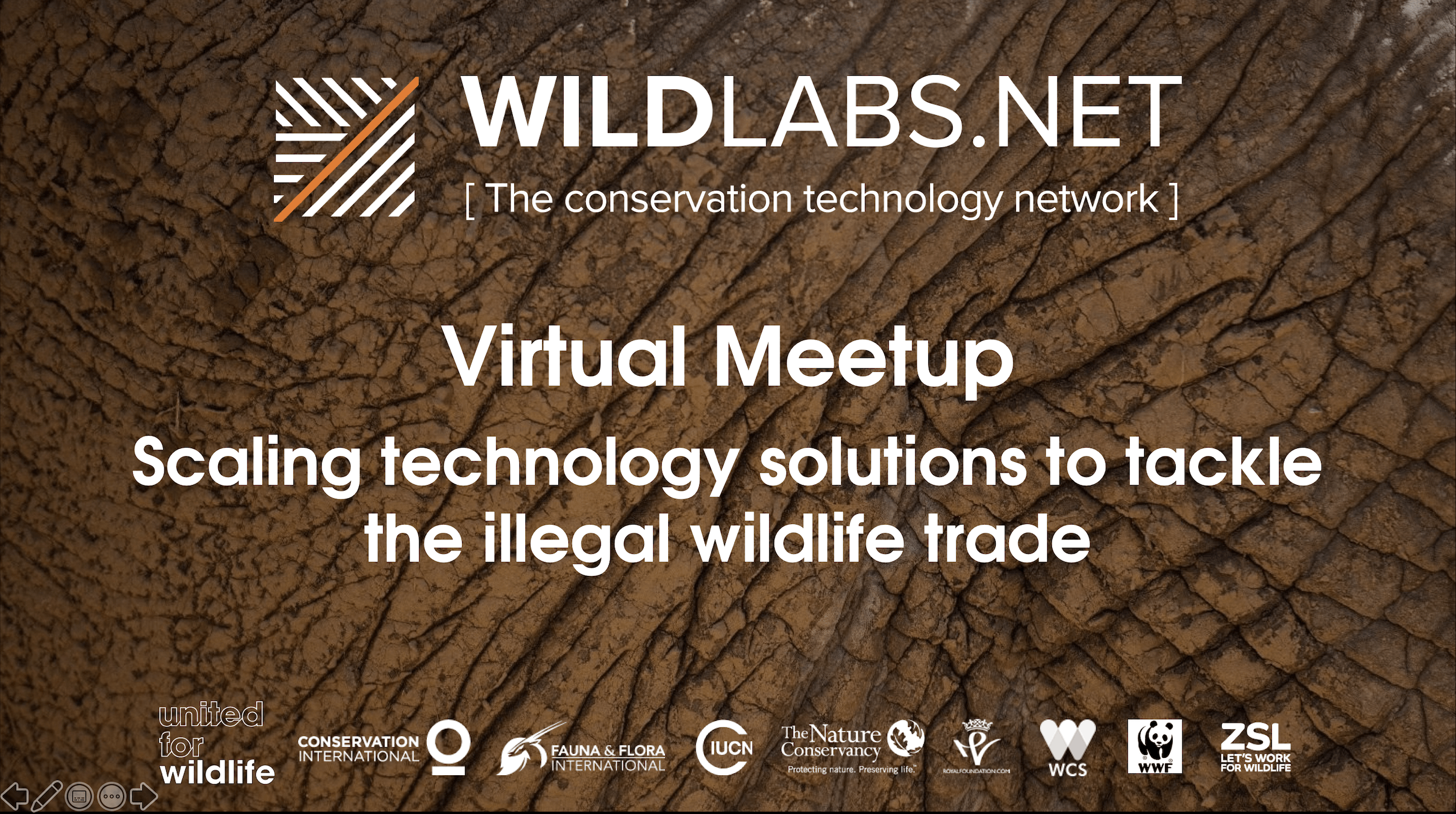 WILDLABS Virtual Meetup Link to Tech Hub Video Recording