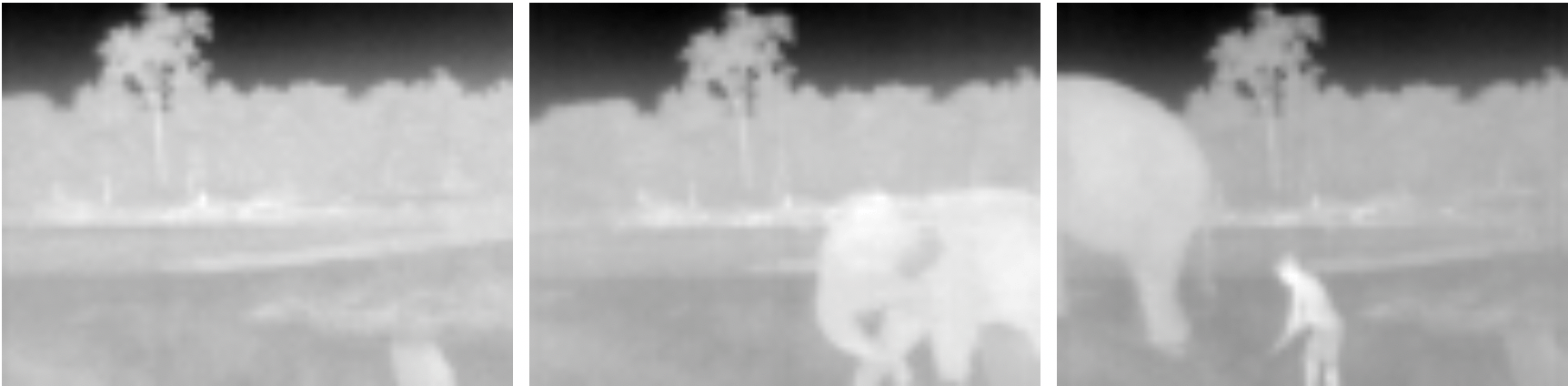 Arribada Initiative Update: Testing our prototype thermal cameras