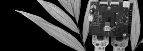 Plant-powered Xnor camera
